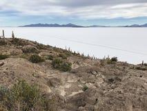 Остров Inkawasi в Uyuni Боливия, Южная Америка Стоковое Изображение