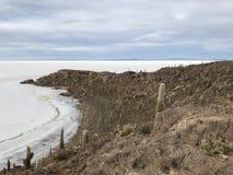 Остров Inkawasi в Uyuni Боливия, Южная Америка Стоковые Изображения RF