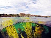 Остров Iona Стоковое Изображение RF