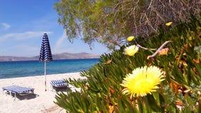 Остров Kos - пляж Marmari Стоковое фото RF