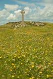 Остров Llanddwyn, Anglesey, Gwynedd, северное Уэльс, Великобритания Стоковые Изображения RF
