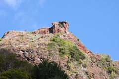 Остров Madiera гигантский спать Стоковые Изображения RF
