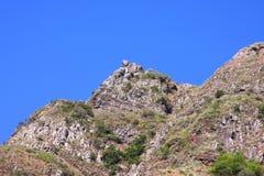 Остров Madiera камень Стоковое Изображение RF