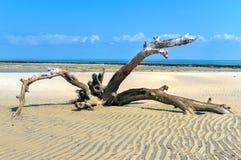 Остров Magaruque - Мозамбик Стоковое Изображение