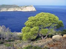 остров mallorca Испания dragonera стоковое фото
