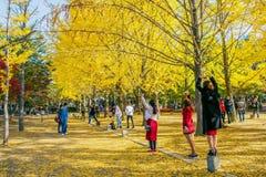 ОСТРОВ NAMI, КОРЕЯ - 25-ОЕ ОКТЯБРЯ: Туристы принимая фото Стоковое Фото