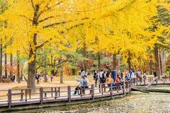 ОСТРОВ NAMI, КОРЕЯ - 25-ОЕ ОКТЯБРЯ: Туристы принимая фото Стоковые Изображения