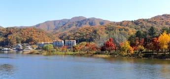 Остров Namiseom в осени Стоковое Изображение