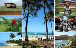 остров oahu Гавайских островов Стоковое фото RF