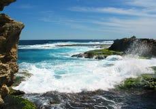 остров rottnest стоковое изображение