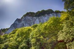 Остров Ruegen, побережье мела, Германия Стоковые Изображения RF