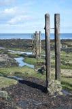 Остров ` s St Mary Стоковая Фотография