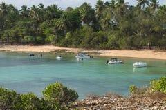 Остров Santo Aleixo - Pernambuco, Бразилия Стоковые Фото