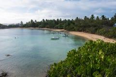 Остров Santo Aleixo - Pernambuco, Бразилия Стоковое Фото
