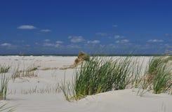 Остров Schiermonnikoog, пляж с белым песком Голландия стоковое фото rf