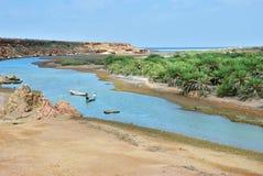 Остров Socotra, Иемен Стоковые Фото
