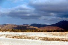 Остров Soqotra Стоковое Фото