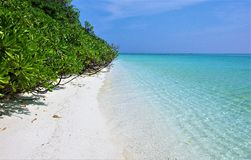 Остров Thoddoo пляжа Мальдивов Стоковое Изображение RF