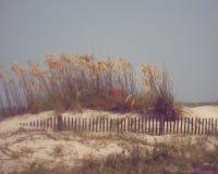 Остров Tybee Стоковые Изображения RF