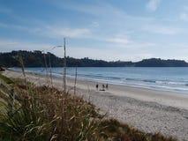 Остров Waiheke - Новая Зеландия Стоковое Изображение RF