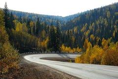 Острый загиб дороги в лесе осени Стоковое Фото