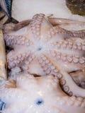 2 осьминога на льде на рыбном базаре Стоковые Фотографии RF