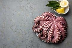 Осьминог морепродуктов Весь свежий сырцовый осьминог с лимоном и лавром, серой предпосылкой шифера, взгляд сверху стоковое фото