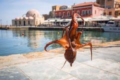 Осьминог на крюке fishermans Стоковые Фото