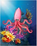 Осьминог под морем Стоковые Изображения RF