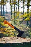 Ось вставила в пень в лесе осени Стоковое фото RF