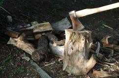 Ось в древесине Стоковая Фотография RF