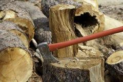 Ось заклинила в пень дерева стоковая фотография