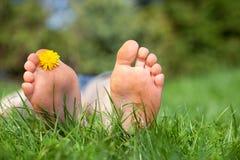 Ослабьте в саде, f Стоковая Фотография