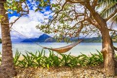 ослабьте тропическое Стоковые Фото
