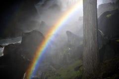 Ослеплять весенняя радуга падений в национальном парке Yosemite Стоковое Изображение RF