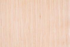 Отбеленная текстура древесины дуба Стоковая Фотография RF