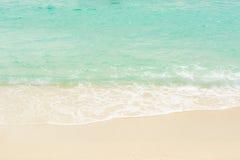 Отбеливатель моря Стоковые Изображения RF