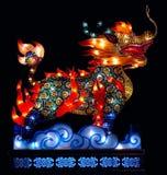 отбортованный дракон Стоковые Изображения