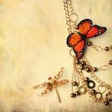 отбортовывает dragonfly бабочки Стоковая Фотография