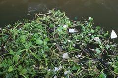 Отброс в реке Стоковые Фотографии RF
