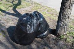 Отброс в 2 черных сумках Стоковое Фото