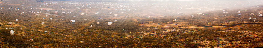 отброс грязи Стоковая Фотография RF