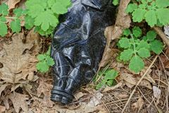 Отброс от черной и пакостной пластичной бутылки в траве и листьях на открытом воздухе Стоковая Фотография RF