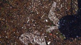 Отброс, погань и другое загрязнение хлама плавая в воду сток-видео
