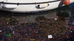 Отброс, погань и другое загрязнение хлама плавая в воду рядом со шлюпкой акции видеоматериалы