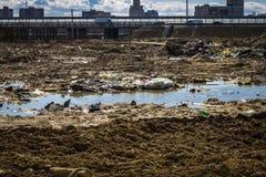 Отброс после конструкции в городе, чуть-чуть земли, болота Проблема экологичности Стоковые Фото