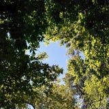 Отверстие в небе Стоковое Изображение RF
