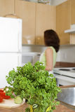 отверстие холодильника Стоковое Изображение