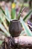 Ответная часть Парагвая Yerba Стоковая Фотография RF