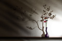 отвратительная красивейшая тень цветков Стоковые Изображения